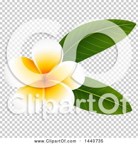 Transparent clip art background preview #COLLC1440735