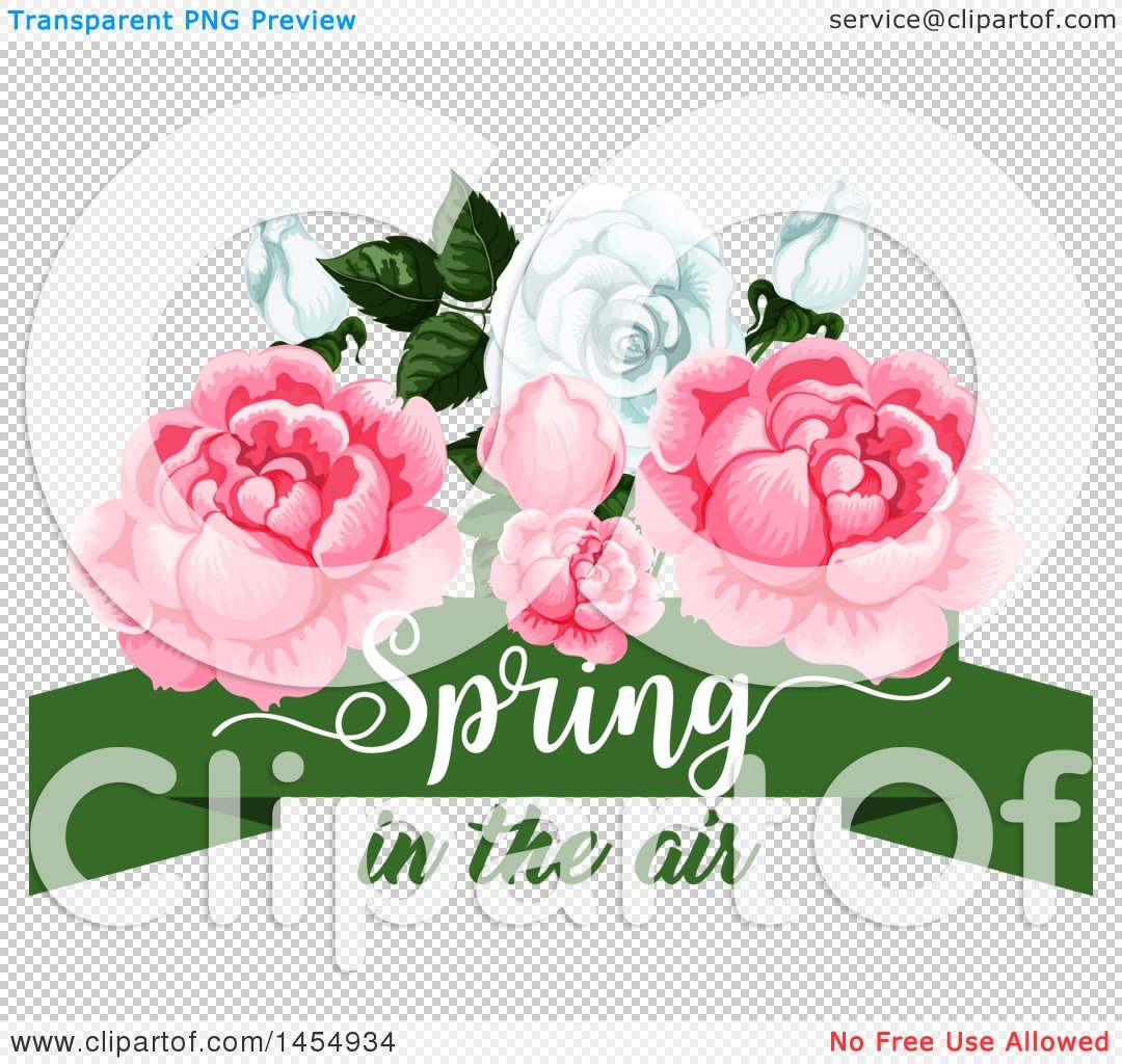Clipart of a White and Pink Rose Spring Time Flower Design Element ... for Vector Rose Flower Png  146hul