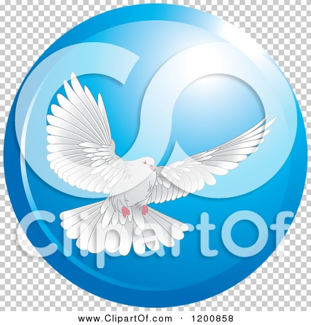 Transparent clip art background preview #COLLC1200858