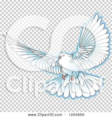 Transparent clip art background preview #COLLC1200859