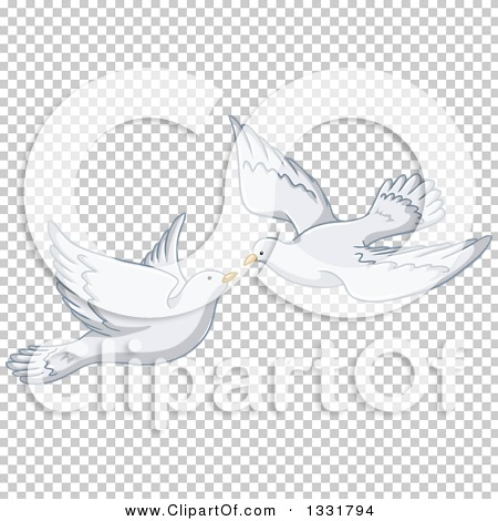 Transparent clip art background preview #COLLC1331794