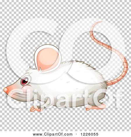Transparent clip art background preview #COLLC1226055