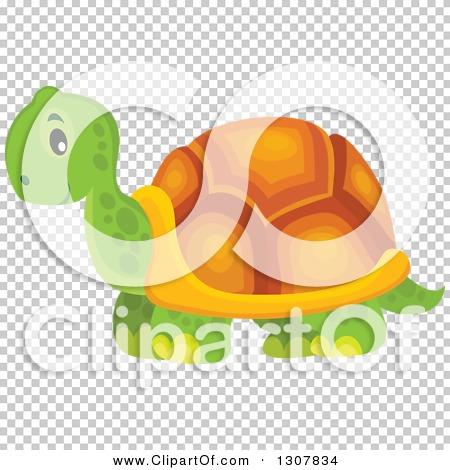 Transparent clip art background preview #COLLC1307834