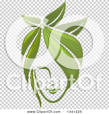 Transparent clip art background preview #COLLC1341225