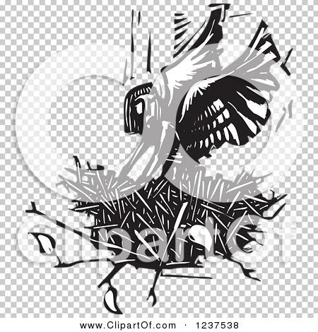 Transparent clip art background preview #COLLC1237538