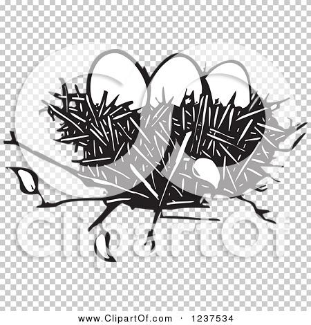 Transparent clip art background preview #COLLC1237534