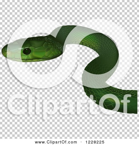 Transparent clip art background preview #COLLC1228225