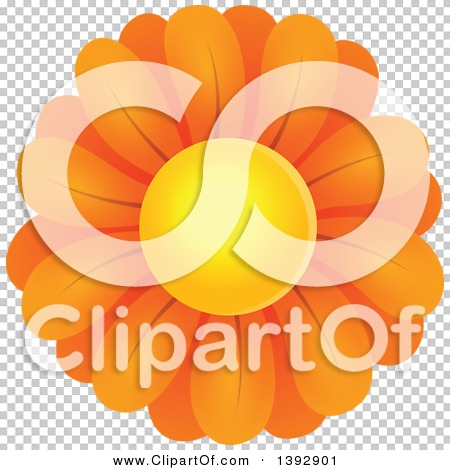 Transparent clip art background preview #COLLC1392901