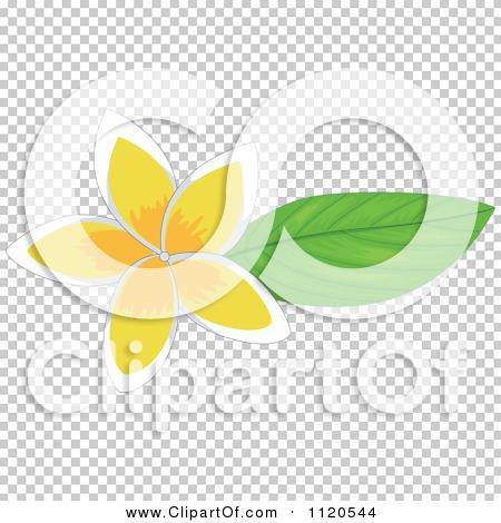 Transparent clip art background preview #COLLC1120544