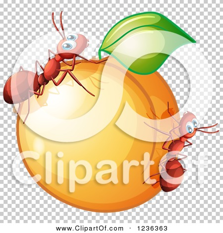 Transparent clip art background preview #COLLC1236363