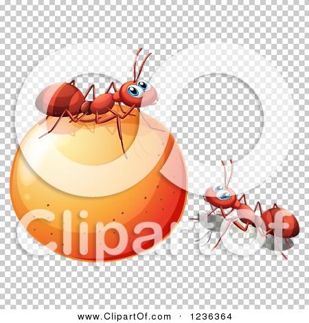 Transparent clip art background preview #COLLC1236364