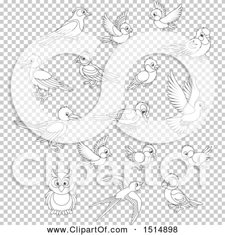 Transparent clip art background preview #COLLC1514898