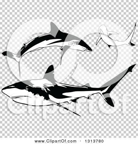 Transparent clip art background preview #COLLC1313780