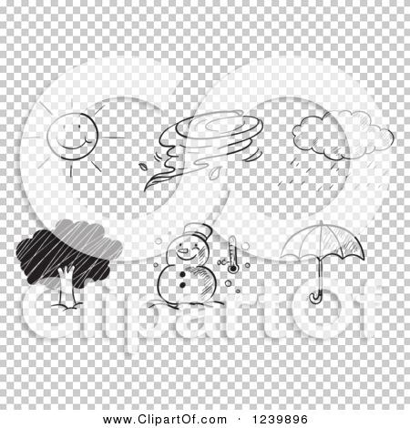 Transparent clip art background preview #COLLC1239896