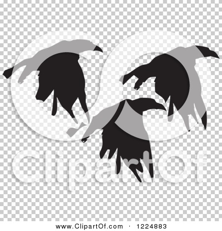 Transparent clip art background preview #COLLC1224883
