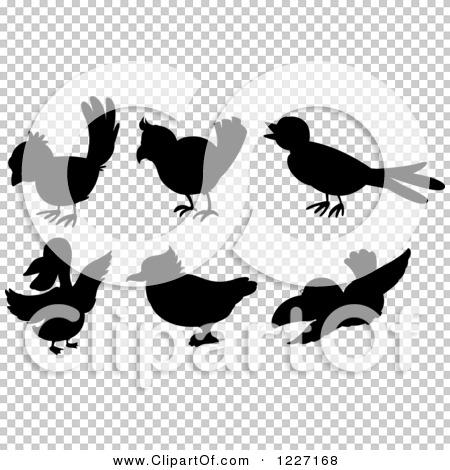 Transparent clip art background preview #COLLC1227168