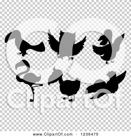 Transparent clip art background preview #COLLC1236475