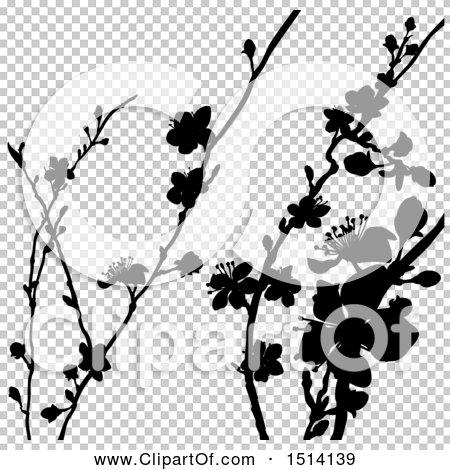 Transparent clip art background preview #COLLC1514139