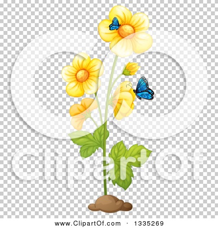 Transparent clip art background preview #COLLC1335269