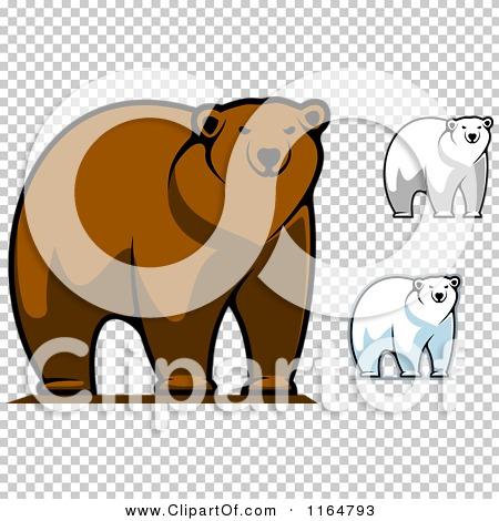 Transparent clip art background preview #COLLC1164793
