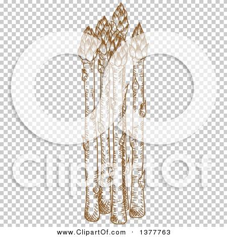 Transparent clip art background preview #COLLC1377763