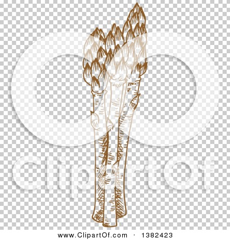 Transparent clip art background preview #COLLC1382423