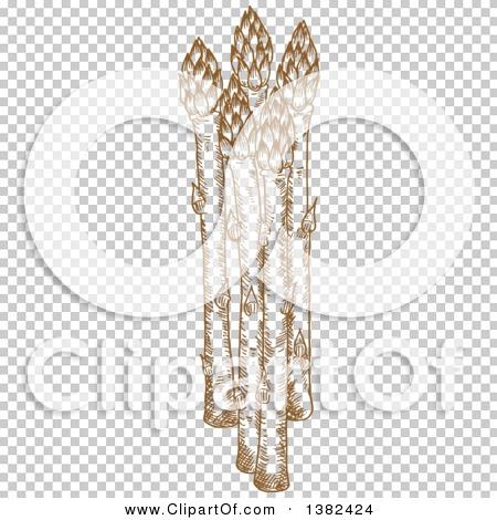 Transparent clip art background preview #COLLC1382424