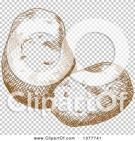 Transparent clip art background preview #COLLC1377741