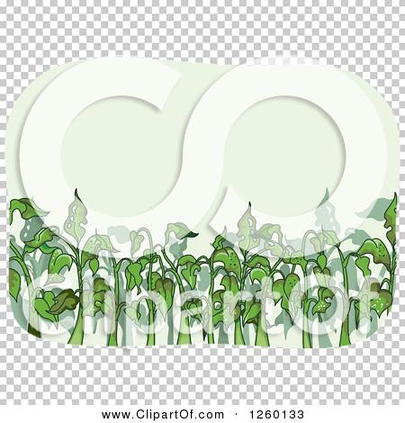 Transparent clip art background preview #COLLC1260133