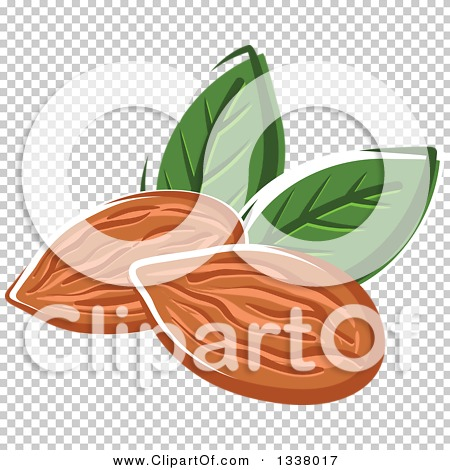 Transparent clip art background preview #COLLC1338017