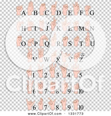 Transparent clip art background preview #COLLC1331773