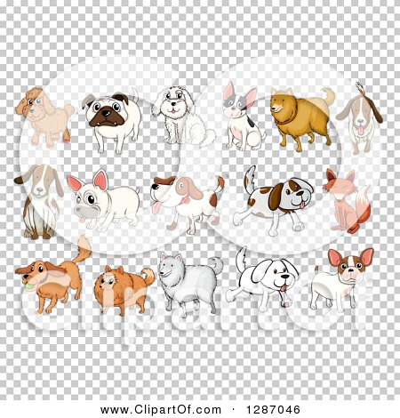 Transparent clip art background preview #COLLC1287046