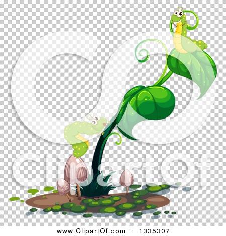 Transparent clip art background preview #COLLC1335307