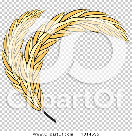 Transparent clip art background preview #COLLC1314535