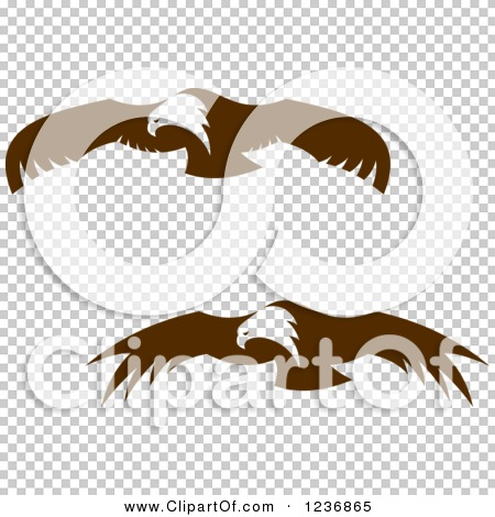 Transparent clip art background preview #COLLC1236865