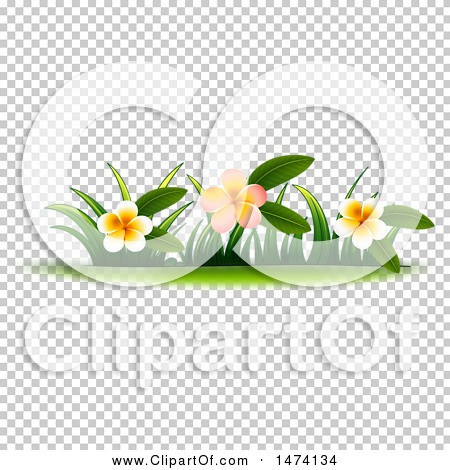 Transparent clip art background preview #COLLC1474134