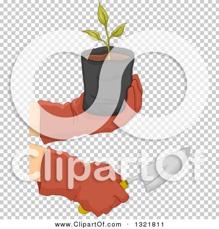 Transparent clip art background preview #COLLC1321811