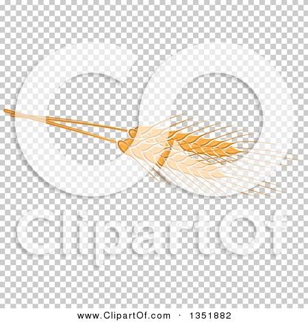 Transparent clip art background preview #COLLC1351882