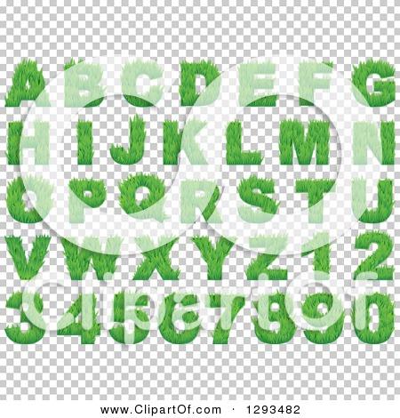 Transparent clip art background preview #COLLC1293482