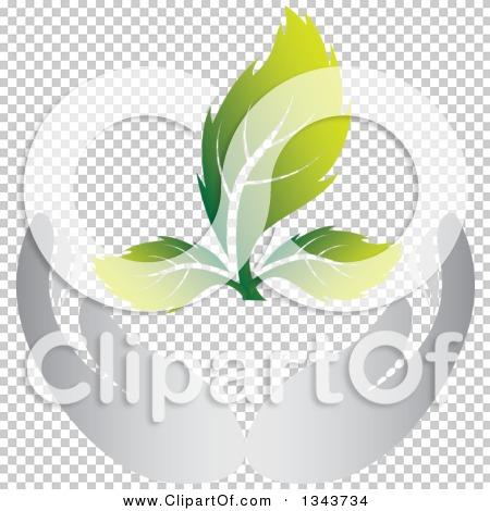 Transparent clip art background preview #COLLC1343734