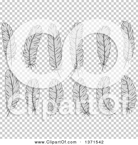 Transparent clip art background preview #COLLC1371542