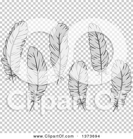 Transparent clip art background preview #COLLC1373694