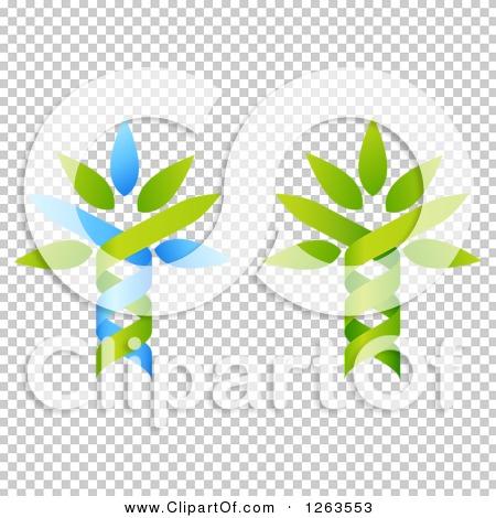 Transparent clip art background preview #COLLC1263553