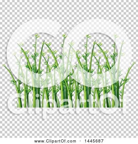 Transparent clip art background preview #COLLC1445687