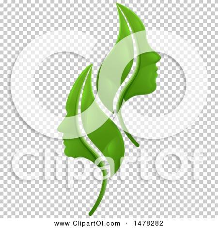Transparent clip art background preview #COLLC1478282