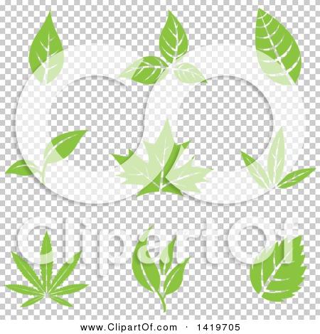 Transparent clip art background preview #COLLC1419705