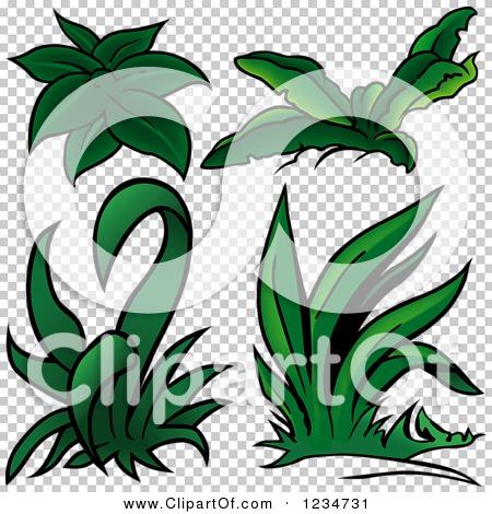 Transparent clip art background preview #COLLC1234731