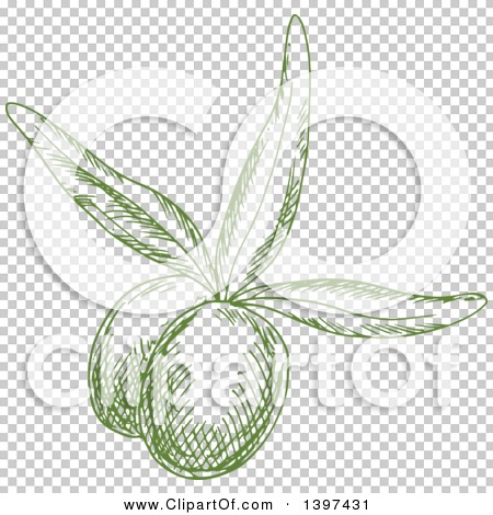Transparent clip art background preview #COLLC1397431