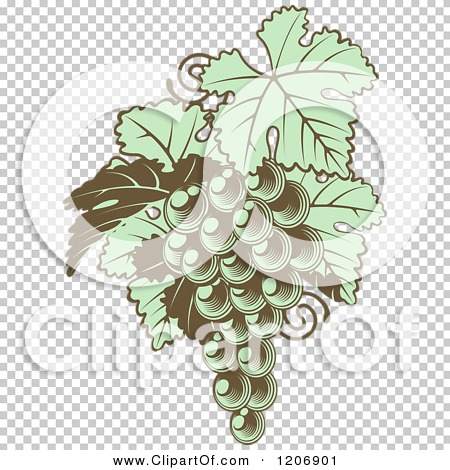 Transparent clip art background preview #COLLC1206901