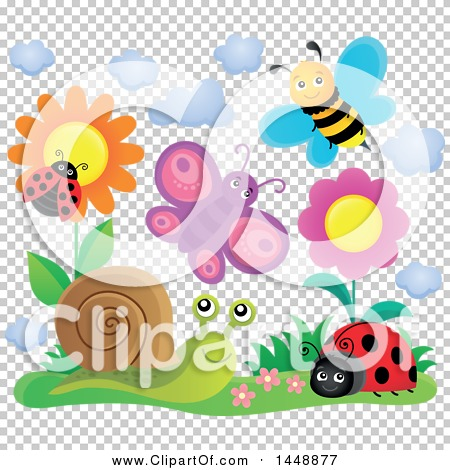Transparent clip art background preview #COLLC1448877